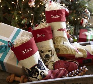 красный чулок с собаками для рождественских подарков