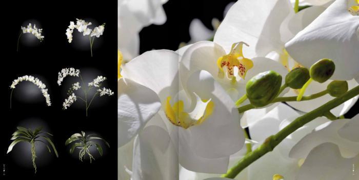 белые искусственные цветы, веточки и листья VG